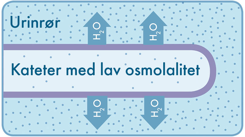 NO Low Osmolality